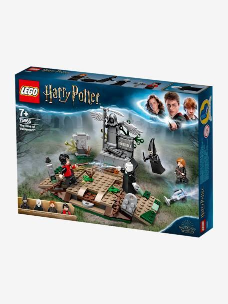 """Lego Duplo Harry Potter 75965 """"Der Aufstieg Voldemort\"""